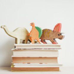 Bücher und Spielzeug